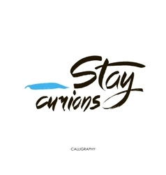 Stay curions Calligraphy with ink drops vector image