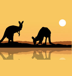 kangaroo on the lake landscape silhouette vector image