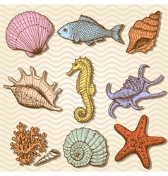 Sea collection Original hand drawn vector image