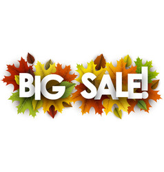 autumn big sale banner with leaves vector image