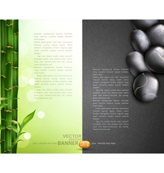 Bamboo and pebbles vector
