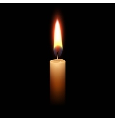 Candle Flame Fire Light Isolated Background vector