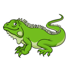 cartoon iguana lizard vector image
