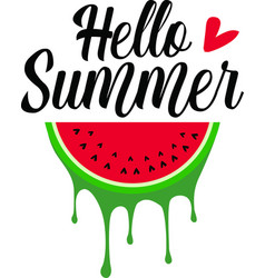 hello summer quote on white background vector image