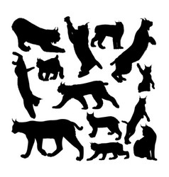 Lynx cat animal silhouettes vector