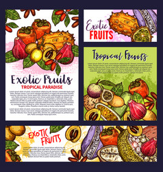 Tropical exotic fruit posters groceries vector