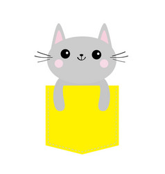 Cat in yellow pocket cute cartoon character gray vector