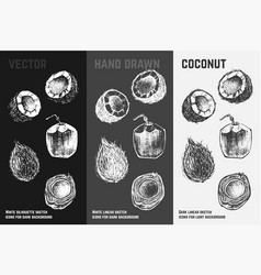 hand drawn coconut icons fresh coctail sketch vector image