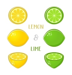 Lemon and lime vector