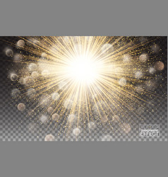 lights effect bright sparkles gold glowing vector image