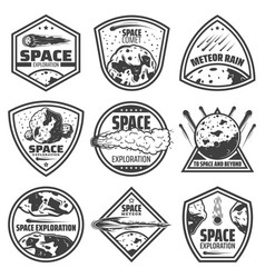 Vintage monochrome comets labels set vector