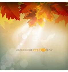 abstract autumn background vector image vector image