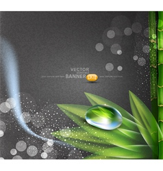 background grey colors vector image vector image