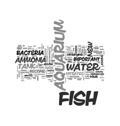 Aquarium care guide new tanks text word cloud vector