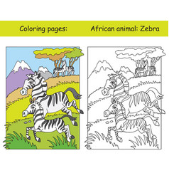 coloring and color zebra vector image