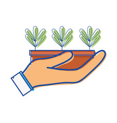 Ecological plants with leaves inside flowerpot in vector