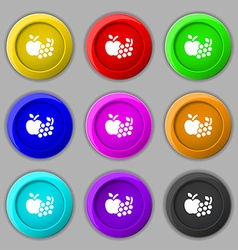 Fruits web icons sign symbol on nine round vector image