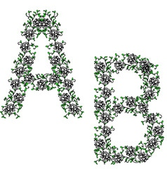 hand drawing ornamental alphabet letter ab vector image