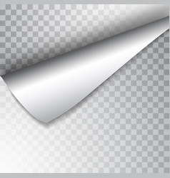 Paper page with curled corner and shadow template vector