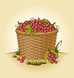 Retro basket grapes vector