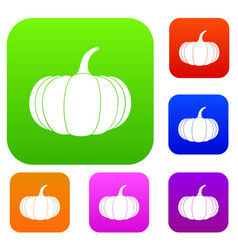 Ripe pumpkin set collection vector