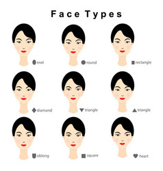 female face shapes on white background vector image
