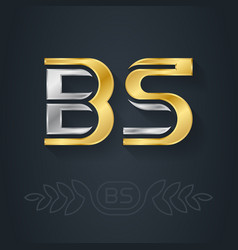 b and s - initials bs - metallic 3d icon or vector image