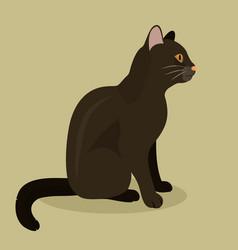 black cat cute kitty pet cartoon cute animal vector image