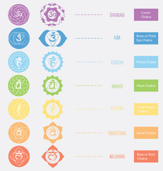 Chakras icons the concept of chakras used in vector