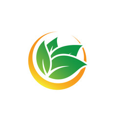 Circle leaf nature logo image vector