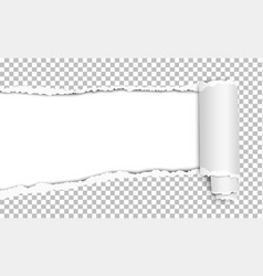 Oblong torn hole in transparent sheet paper vector