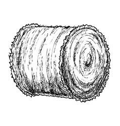 roll of hay sketch vector image