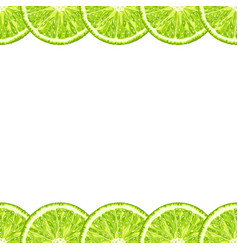 seamless decorative horizontal border of lime vector image vector image