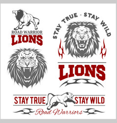 set of lions themed sport logo vector image