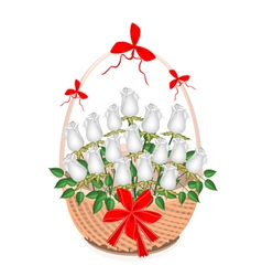 A Brown Basket of Lovely White Roses vector