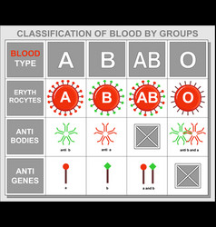 background table about hematology blood type vector image