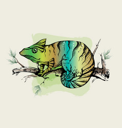 color calligraphic ink silhouette of a chameleon vector image