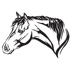 Decorative portrait of horse 6 vector