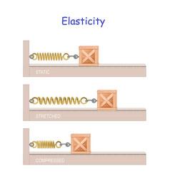 elastic potential energy elasticity hookes law vector image