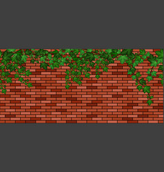 Ivy on brick wall green ivy leaves climbing red vector
