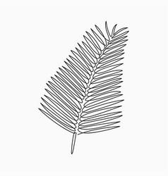 palm leaf one line vector image
