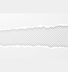 realistic torn paper edges vector image