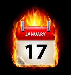 Seventeenth january in calendar burning icon on vector