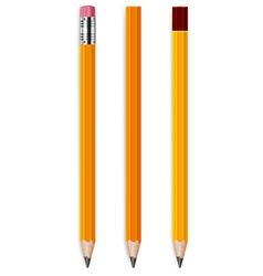 pencils with eraser vector image