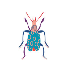 Colorful insect cute beetle top view vector