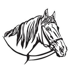Decorative portrait of horse 7 vector
