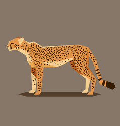 flat geometric cheetah vector image