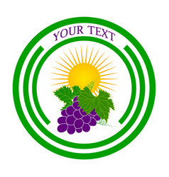 logo grapes and the sun vector image