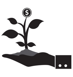 man hands holding money tree vector image