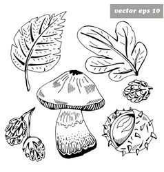 ink fall items vector image vector image